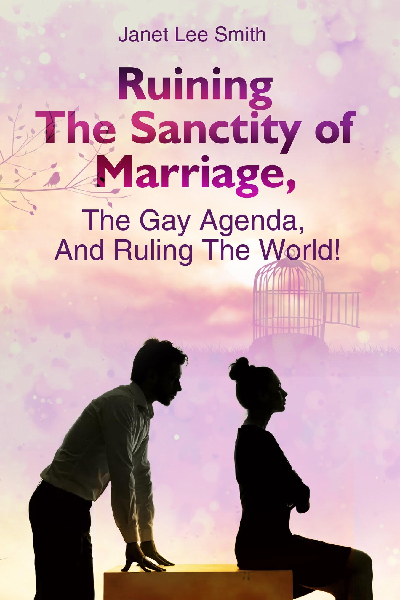 Ruining The Sanctity of Marriage, The Gay Agenda, And Ruling The World! by Janet Lee Smith